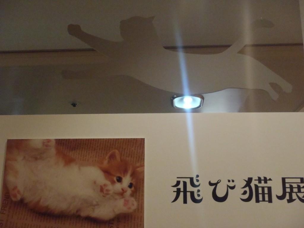 photo2035_7