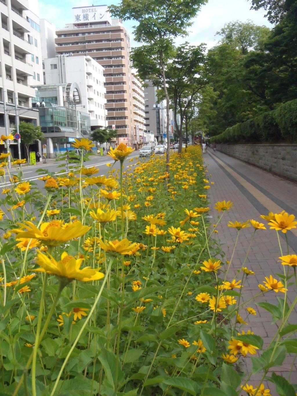 photo2232_6