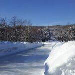札幌芸術の森で雪原散策してみた